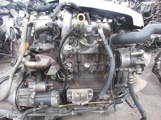 Used engine transmission zd30 t 4wd at nissan elgrand for Nissan motor phone number