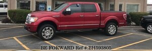 Used 2010 FORD F150 BH593805 for Sale