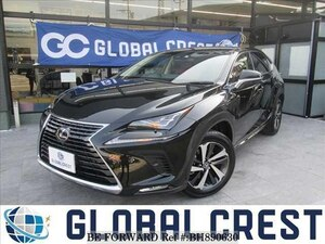 Used 2019 LEXUS NX BH890630 for Sale