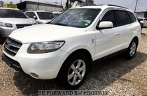 Used 2007 HYUNDAI SANTA FE BG338133 for Sale for Sale