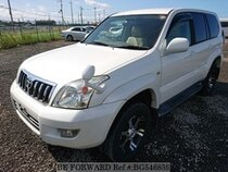 Used 2004 TOYOTA LAND CRUISER PRADO BG546859 for Sale for Sale