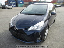 Used 2019 TOYOTA VITZ BG589215 for Sale for Sale