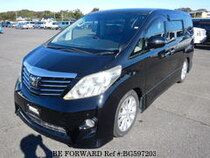 Used 2008 TOYOTA ALPHARD BG597203 for Sale for Sale