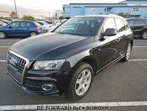 Used 2010 AUDI Q5 BG602850 for Sale for Sale