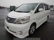 Used 2008 TOYOTA ALPHARD BG651593 for Sale for Sale