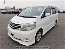 Used 2006 TOYOTA ALPHARD BH587506 for Sale for Sale
