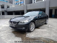 2010 BMW 5 SERIES SMW5112C